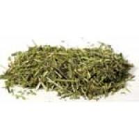 Scullcap Cut 1oz (scutellaria Lateriflora)
