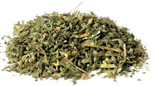 1 Lb Catnip Cut (nepeta Cataria)