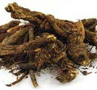 1 Lb Goldenseal Root Cut (hydrastis Canadensis)